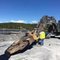Dolomite Mine Decommissioning 39